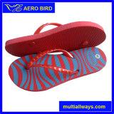 Обувь PE печатание самого лучшего качества симпатичная для девушки