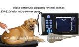 Fácil carreg o varredor veterinário Handheld Ew-B10V do ultra-som com ponta de prova Micro-Convexa C5r10 para abdominal, cardíaco e a reprodução dos animais