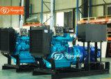 Diesel la bomba de agua del motor (conjunto)