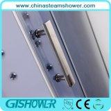 Jogo de vidro do chuveiro da massagem do vapor do banheiro (GT0515A)