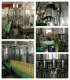 オリーブ色のOil Filling Equipment Production LineかPlant