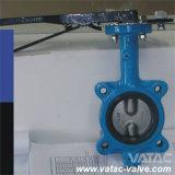 Pn10/Pn16 Semi-Arrastam o fornecedor Ductile da válvula de borboleta do ferro