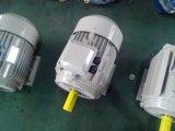 Электрический двигатель Y2-132m2-6 рамки чугуна серии Ie2 Y2/Y трехфазный, 5.5 сертификат Ce Kw 7.5HP (TEFC IP55)