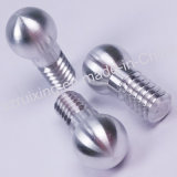 CNC Turning Parte di Aluminum Ball Screw