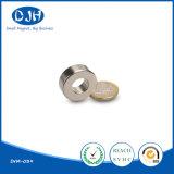 De kleine Magneet van de Ring van de Grootte Extra Sterke Gesinterde voor Spreker