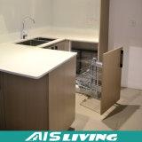 Неофициальные советники президента MDF меламина квартиры гостиницы для мебели кухни (AIS-K056)