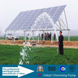 Bombas sumergibles del calor solar de la C.C. del 100% para Waterwall