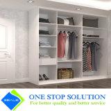 Caminhada nos Wardrobes da mobília do quarto do armário (ZY 2019)