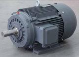 Fer de moulage de moteur électrique à C.A. de la série Y2 2p 200kw