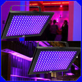 Luce UV del comitato LED 192PCS con lo stroboscopio