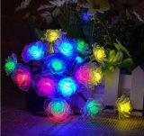 Lumière Rose de chaîne de caractères de l'énergie solaire 20-LED pour la Neuf-Année Lh-Ss24 de mariage de Noël