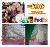 Testosterona masculina Enanthate del CAS 315-37-7 del polvo de la hormona del 99% para el crecimiento del músculo