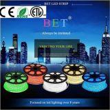SMD5050 impermeabilizzano l'alta illuminazione di striscia di lumen LED RGB