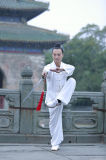 Hommes de toile Long-Sleeved à haute teneur de Chi de Wudang Kongfu Tai uniformes