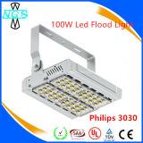 Indicatore luminoso di inondazione di watt SMD LED di alto potere 250