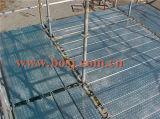 Pain de planche d'échafaudage de panneau de promenade d'échafaudage formant le fournisseur Singpore de machine