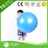 Sfera del Pilate della sfera di forma fisica di esercitazione con la sfera di massaggio della pompa con la pompa