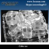 Macchina di ghiaccio del tubo di Focusun 10ton con il sistema del PLC