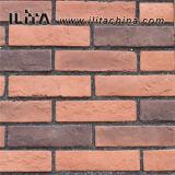 芸術の煉瓦石の薄いベニヤのクラッディングの石のタイル(YLD-20077)