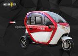 3 바퀴 전기 소형 차 인근 지능적인 전차