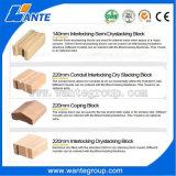 Argilla di Wt1-20m/blocco/macchina per fabbricare i mattoni solidi con il miscelatore