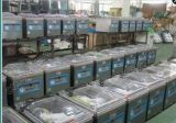 una gran cantidad de máquina de empaquetamiento al vacío de la fuente de los fabricantes para el pequeño camarón que empaqueta al vacío, Ce aprobado