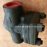 API602 schmiedete Gewinde-Enden-Aufzug-Rückschlagventil des Kohlenstoffstahl-A105