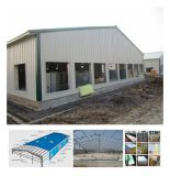 Camera prefabbricata di pollicultura della struttura d'acciaio