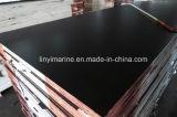 la película de 1250mm*2500m m hizo frente a la madera contrachapada para la construcción BB/CC
