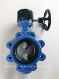 Doppio Dual Shaft Undercut Disc Butterfly Control Valve con CE Approved (D7A1X-10/16)