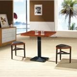 Cadeira de jantar de madeira moderna para o café (HW-333C)