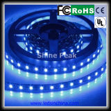 Una striscia di 3528 240 LED/M