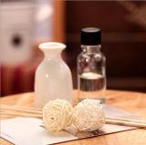 De Reeks van de Gift van de Essentiële Olie van Aromatherapy