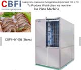 Europäischer Standard-Platten-Eis-Pflanze für Fischen