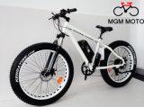 Vélo électrique de grosse de pneu grande de pouvoir neige de montagne