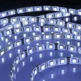 방수 DC12V Ws2811 30LEDs 5m 롤 LED 지구