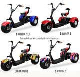 Trike eléctrico con 1000W 60V/20ah