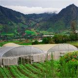 Invernadero agrícola del jardín superventas 2016 con la tela del PVC