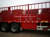 Rete fissa Cargo Semi Trailers con Grid Box e New Lock