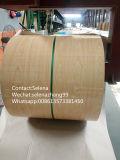 목제 곡물 PPGI는 Prepainted 강철 코일 (ZL-PPGI)를