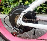 リチウム電池の脂肪質のタイヤ電気浜の巡洋艦の自転車