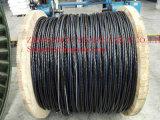 세겹 1/0AWG AAC Cable