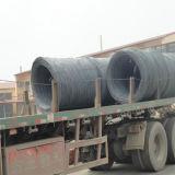 Alambre Rod de acero con poco carbono de SAE1006 SAE1008