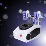 美装置を細くする涼しいScultpingを持ち上げる熱いCryolipolysis 40kのキャビテーションRFボディ