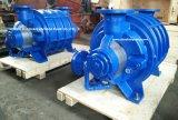 Cl2002 de Vloeibare Vacuümpomp van de Ring voor Industrie van het Document