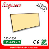 80W, 7500lm, 300X1200mm LED Panel Light with 5years Warranty