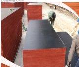 O grupo Ffp /Film de Luli enfrentou o preço de /Plywood do fabricante da madeira compensada