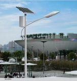 60W Solar Street Light met Street Light Fixture