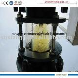 Tipo especial planta da câmara de ar do projeto da pirólise do pneumático com porta completamente aberta