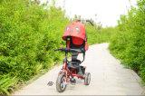 Baby-Dreirad, Baby-Spaziergänger, Kind-Dreirad